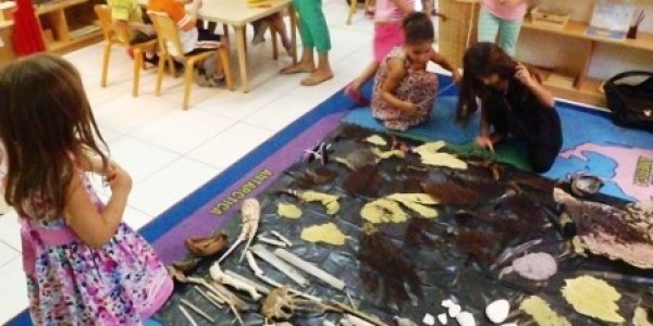 Weave the Reef – Art Workshop for Families