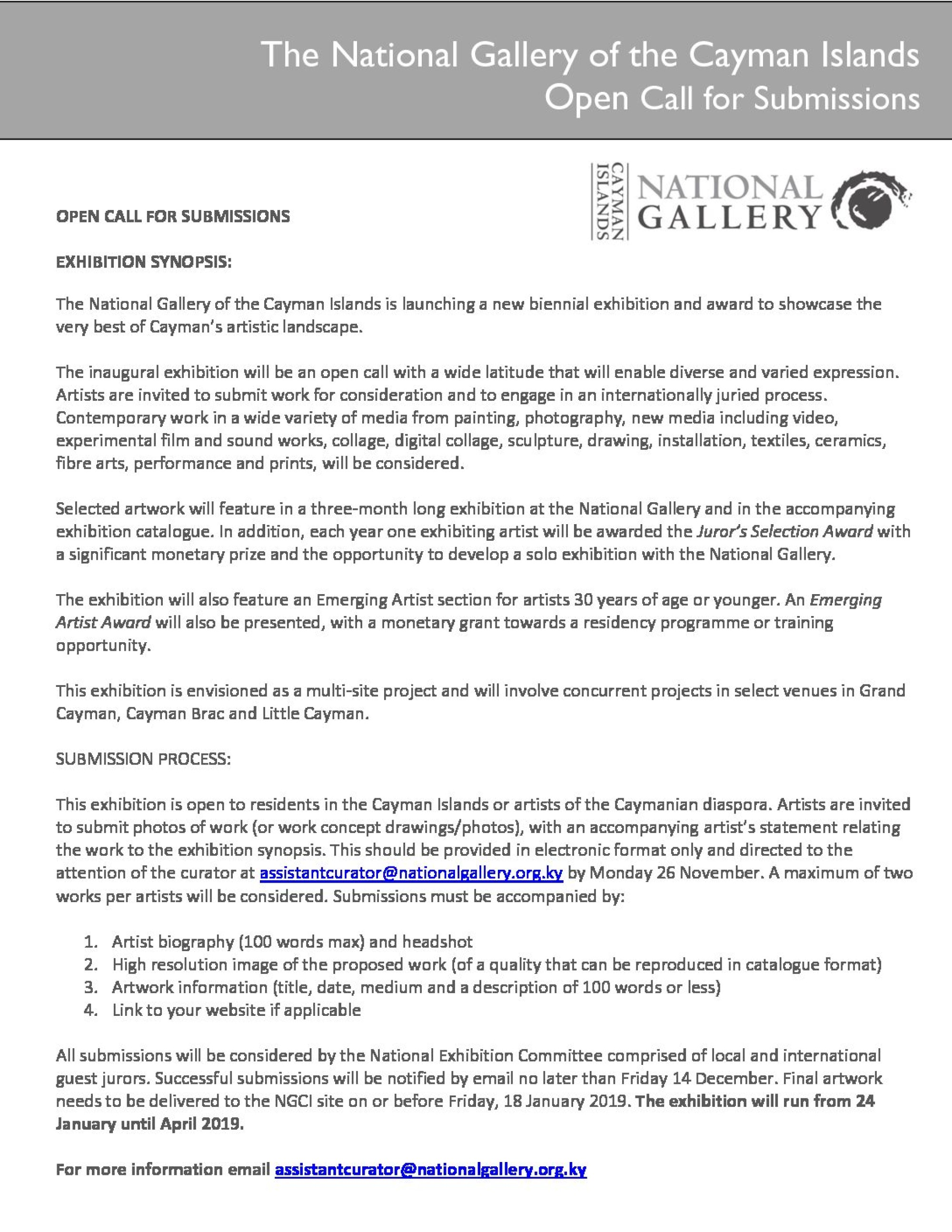 Open Call for Artist - New National Gallery Biennial Exhibition